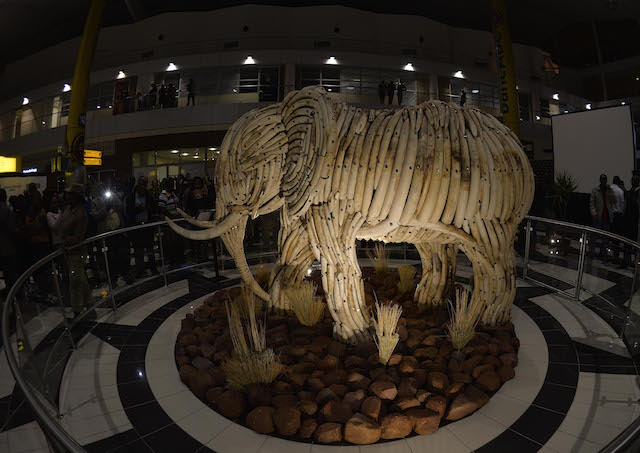Ivory Elephant