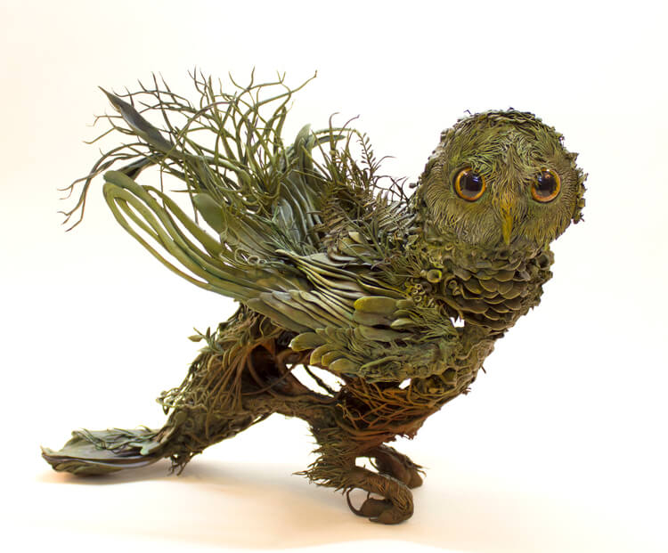 Ellen Jewett owl