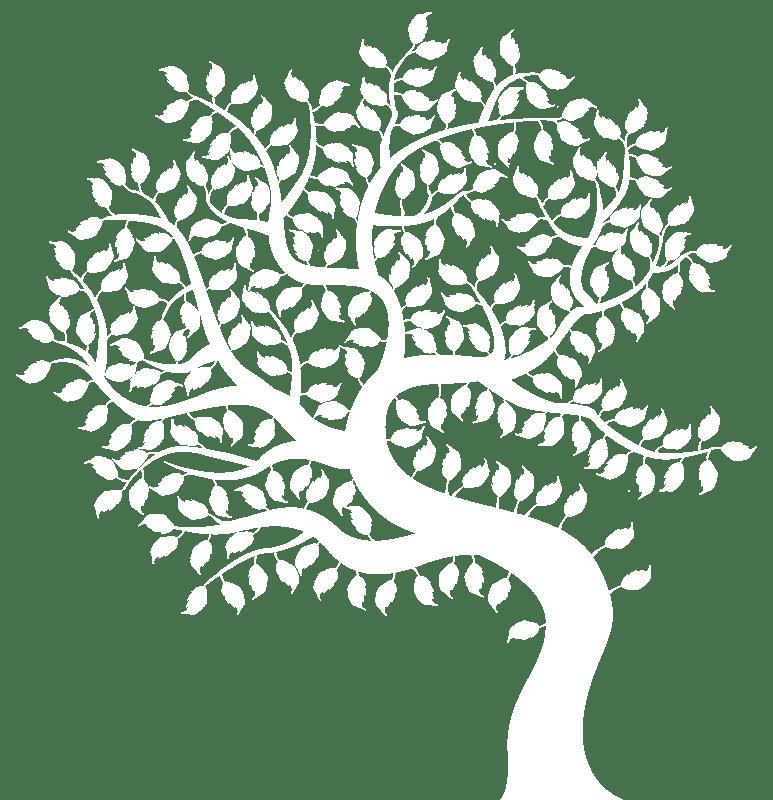 scuola di naturopatia albero lumen