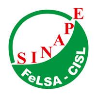 Logo senape cisl