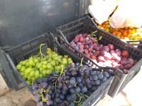 mercato agricolo diffuso di Mola di Bari - uva da tavola e prugne