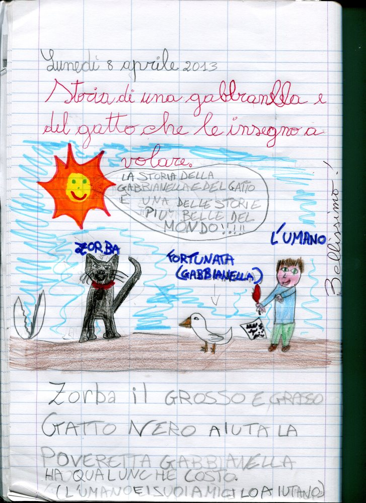 LA GABBIANELLA E IL GATTO 4 LE NOSTRE RIFLESSIONI (1/3)