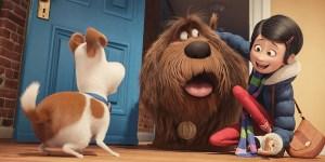 film pets vita da animali