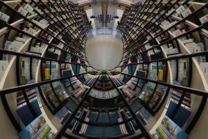 Sai perché MLOLPlus è un bel regalo per chi ama leggere?