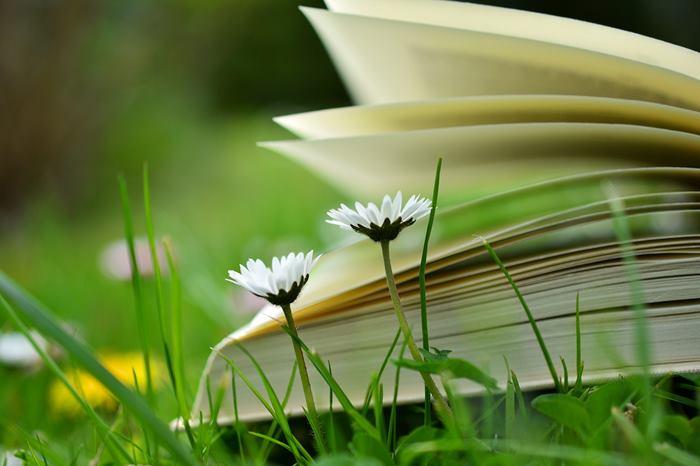 libri da leggere estate