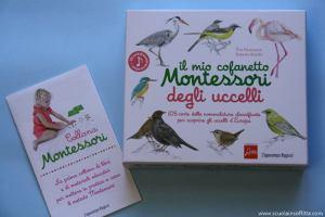 Il mio cofanetto Montessori degli Uccelli