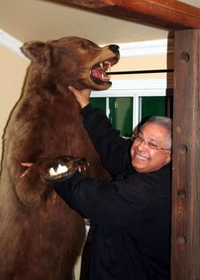 bear8