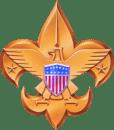 bsa-logo-gold