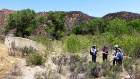 CSUN students mapping San Francisquito Canyon. From left, Amir Douma, Krystal Kissinger,kl Jacob Deubner, Efren Martinez and Julee Licon. Photo courtesy of James E. Snead/CSUN.