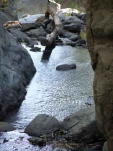 Bouquet Creek in wetter times.