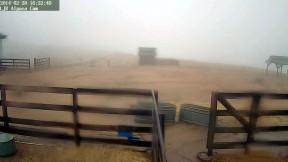 Wet, but no snow as of 4:22 p.m. on the Alpaca Cam at the Lone Juniper Ranch outside of Gorman.