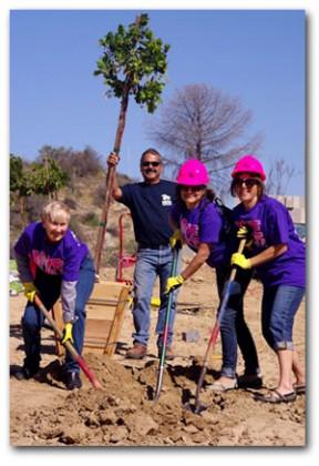 Laurene Weste, Wilk, Knight, planting tree 2