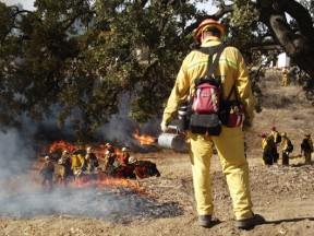firefighters-waiting-right-conditions-conduct-controlled-burns