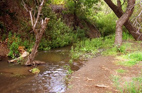 What Bouquet Creek is supposed to look like.
