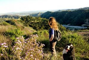Newhall Pass open space added