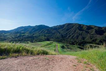 Open space Golden Valley