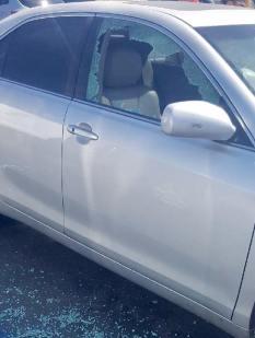 deputies break window to rescue dogs from locked car