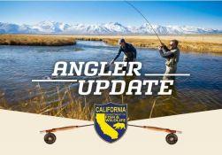 Angler Update header