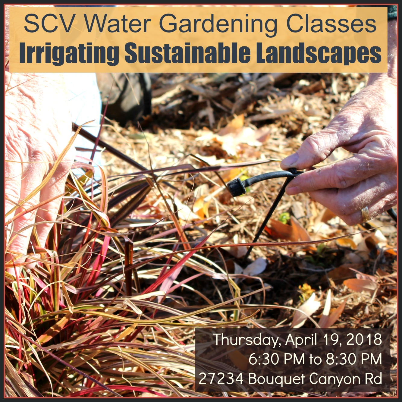 SCVNews.com | April 14, April 19: SCV Water Gardening Classes | 04 ...