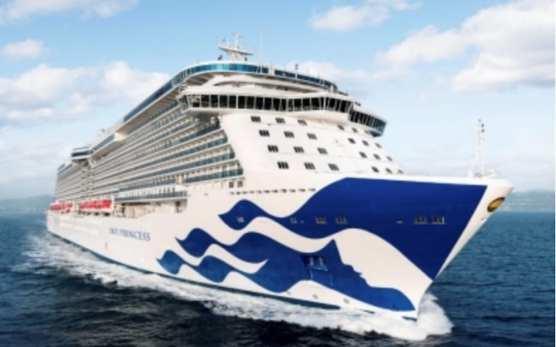 Princess Cruises has appointed Prag (Pragnesh) Shah