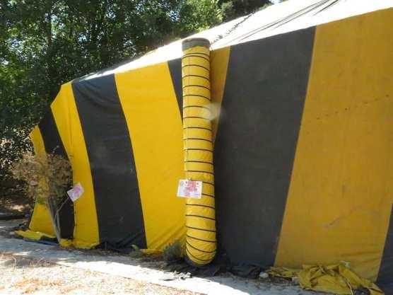 Termites Heritage Junction