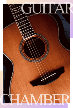 scvyo guitar orchestra guitarist