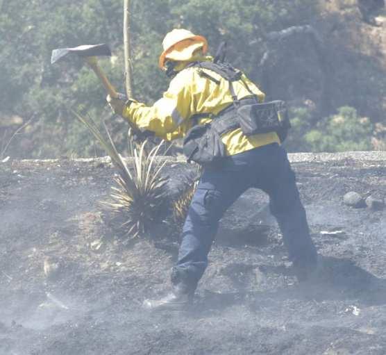 Newhall Vegetation Fire