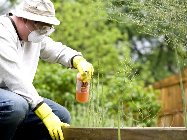 Pesticide Toxicity Reduction