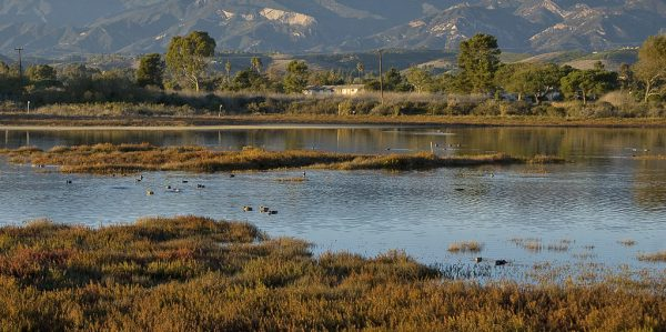 WRP Initiatives - Southern California Wetlands Recovery Project