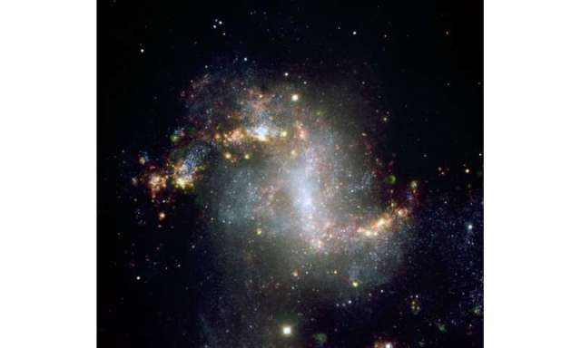 Black hole seeds missing in cosmic garden