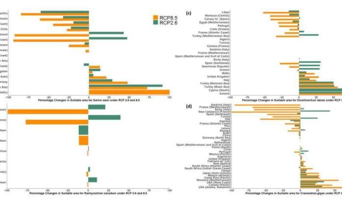 Piscicultura oceânica nos trópicos e sub-trópicos mais impactados pelas mudanças climáticas: estudo da UBC