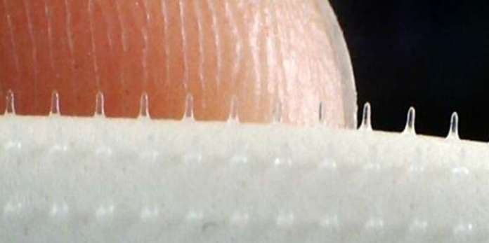 Vaccines through microneedle skin patches