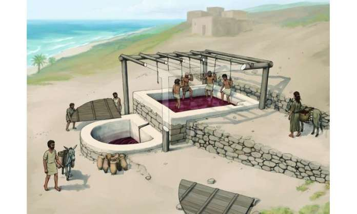 Iron Age wine press yields clues to Phoenician building techniques