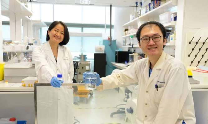 ?NTU scientists develop energy-saving 'liquid window'