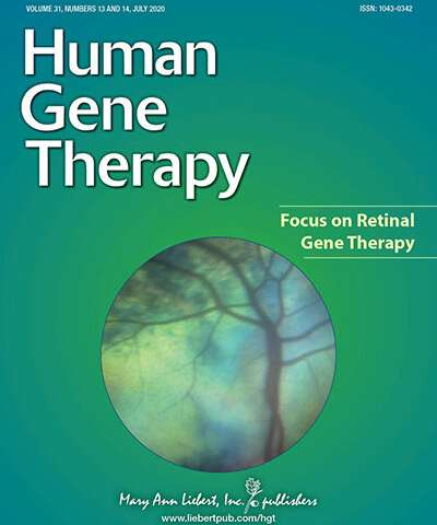 Gene therapy targets inner retina to combat blindness
