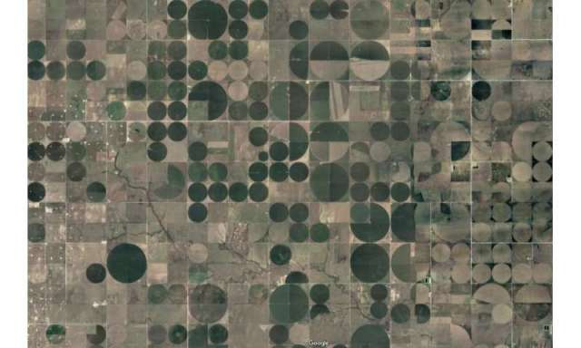 Geographers find tipping point in deforestation