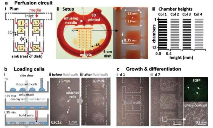 Jet-printing complex circuits using microfluidics