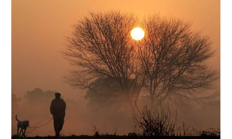 A man and his dog are silhouetted against the rising sun amid dense fog on a cold winter morning on the outskirts of Chandigarh