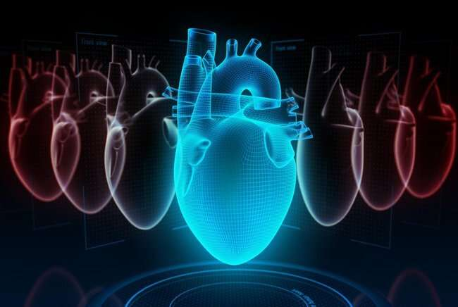New neural network helps doctors explain relapses of heart failure patients