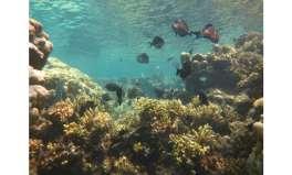 Simple framework helps future ocean studies