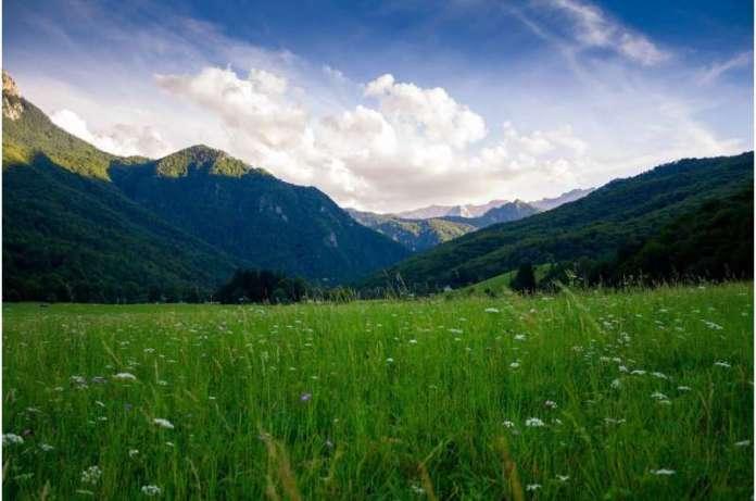 प्रकृति