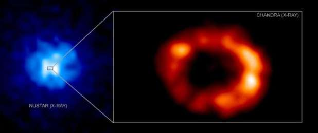 An isolated neutron star may have been found in a famous supernova