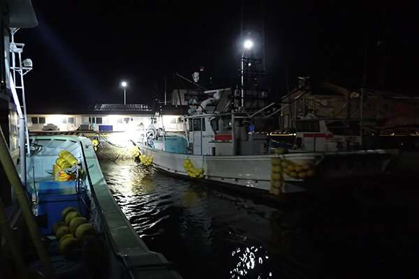 Resilience of fisheries following tohoku tsunami