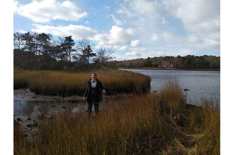 Salt marshes trap microplastics in their sediments, creating record of human plastic use