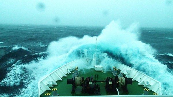 Scac Code List 2020.Ocean Carrier Scac Code List Ocean Carrier Scac Code List