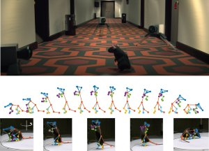 The 3D deep neural network accurately reconstructs the movements of animals that behave freely