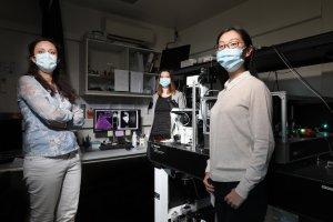 Scientists can now map deficiencies in 2D crystals in a liquid