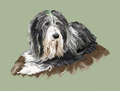 https://i2.wp.com/sd-5.archive-host.com/membres/images/164353825412355948/bearded_collie_2_wordpress.JPG