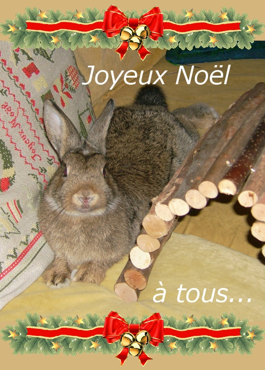 https://i2.wp.com/sd-5.archive-host.com/membres/images/164353825412355948/joyeux_noel_gribouillon.JPG
