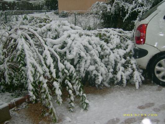 https://i2.wp.com/sd-5.archive-host.com/membres/images/164353825412355948/neige_2013_6.JPG